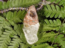 白砂勝敏 鉱物ジュエリー ワニ水晶