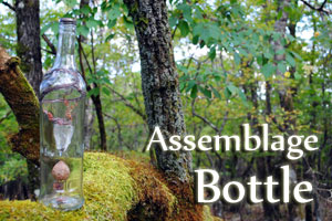 bottle assemblage