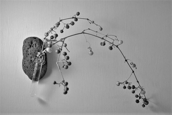 一輪挿し花器 - 白黒